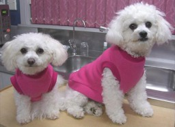 Pullover Fleece Coats